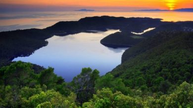 Photo of The Magic of Croatia's Landscape – These Are the Best Landscapes in the Country