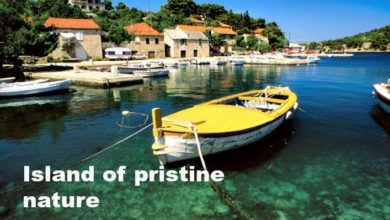 Photo of Complete Travel Guide to Visiting Solta Island, Croatia